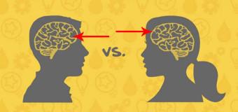 Różnice między mózgiem kobiety a mężczyzny
