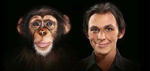 małpa a człowiek